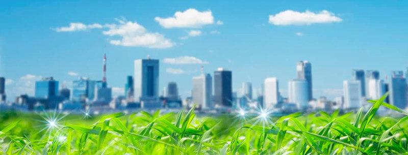 Экологическая компания Альфа Экспертиза